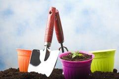 Strumenti di giardinaggio nuovi, cassetto della canna Immagini Stock