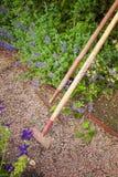 Strumenti di giardinaggio nuovi, cassetto della canna Fotografia Stock