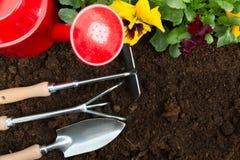 Strumenti di giardinaggio sul fondo del suolo Piantatura del fiore della pans? della molla in giardino Concetto del lavoro del gi immagini stock