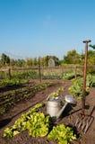 Strumenti di giardino Immagine Stock