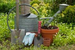 Strumenti di giardino Fotografia Stock Libera da Diritti