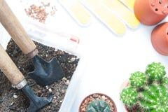 Strumenti di giardino con il vaso del cactus su fondo bianco Immagine Stock