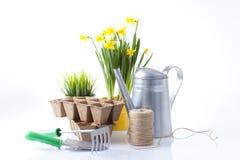 Strumenti di giardino e fiori della sorgente Fotografia Stock Libera da Diritti