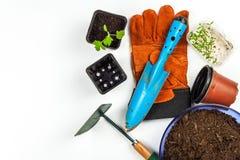 Strumenti di giardino Guanti e mestolo Verdure crescenti sull'azienda agricola Piantatura dei pomodori Giardiniere di utilità fotografia stock libera da diritti