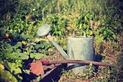 Strumenti di giardino nel giardino Fotografie Stock