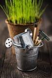 Strumenti di giardino in un secchio su una tavola di legno fotografia stock libera da diritti