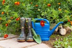 Strumenti di giardino vicino al tagete dei fiori in giardino Fotografia Stock Libera da Diritti