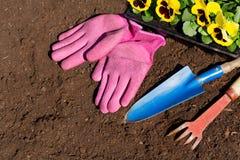 Strumenti e fiori di giardinaggio sul fondo del suolo immagine stock libera da diritti