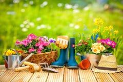 Strumenti e fiori di giardinaggio sul terrazzo fotografie stock libere da diritti