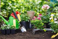 Strumenti e fiori di giardinaggio in vaso per la piantatura al cortile fotografia stock libera da diritti