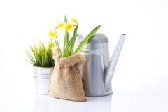 Strumenti e fiori di giardino Fotografia Stock