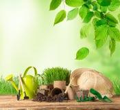 Strumenti e piante di giardinaggio all'aperto fotografia stock
