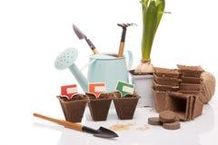 Strumenti e piantine di giardinaggio Fotografia Stock Libera da Diritti