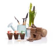 Strumenti e piantine di giardinaggio Fotografie Stock