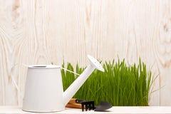 Strumenti ed erba di giardinaggio Fotografia Stock