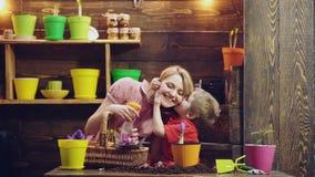 Strumenti, guanti e annaffiatoio di giardino all'aperto Attività di giardinaggio con il bambino e la famiglia Il ragazzo sveglio  stock footage