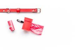Strumenti rossi governare per la formazione dell'animale domestico con il collare sul modello bianco di vista superiore del fondo Fotografia Stock Libera da Diritti