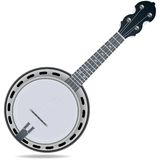 Strumento delle fiddle del banjo Fotografia Stock Libera da Diritti