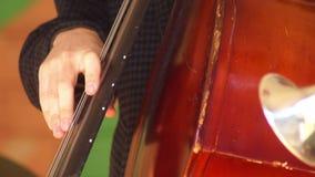 Strumento di concerto di musica archivi video