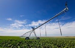 Strumento di irrigazione Fotografie Stock Libere da Diritti