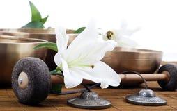 Strumento di massaggio Fotografia Stock