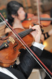 Strumento di musica del violino. Giocatore classico Fotografia Stock Libera da Diritti