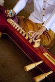 Strumento di musica/ja-kae tailandesi Fotografie Stock