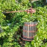 Strumento per la produzione di vino dall'uva fotografia stock