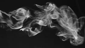 Strumień bielu dymu kręcenie w dym chucha na czarnym tle zbiory wideo
