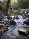 strumień płynie Fotografia Royalty Free