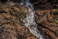 Strumień przez skał zdjęcie stock