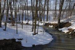 strumień wijąca zimy. Obraz Stock