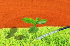 Strumień woda iryguje pustynię i młode rośliny r w trawie obraz stock
