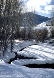 strumień zima obraz stock