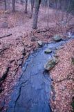 strumień Obraz Stock