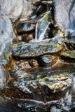 strumień elektrycznie Obrazy Royalty Free