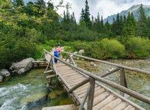 Strumień i rodzina Wysoki Tatras, Sistani na drewnianym moscie (,). Fotografia Stock