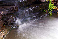 strumień ogród Zdjęcia Stock