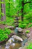 Strumień w lesie Fotografia Royalty Free
