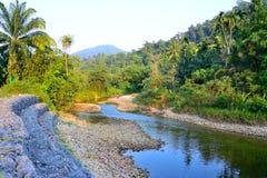 Strumieni przepływy od gór lasowego halnego backgro Fotografia Stock
