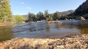 Strumienia spływanie w lecie zdjęcie wideo