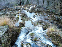 Strumienie Światowa rzeka w sierra de Alcaraz Fotografia Stock
