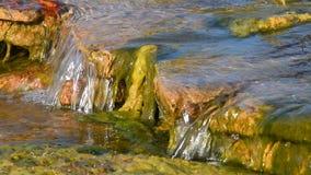 Strumyk wody strumień z małą szczeliną zdjęcie wideo