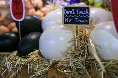 Strusia i emur jajka w rynku zdjęcia stock