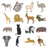 Strutsemu, krokodil, giraff, tiger, pingvin och annan vilda djur Artiodactyla, däggdjurs- rovdjur och djur vektor illustrationer