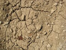 Struttura al suolo incrinata Fotografia Stock