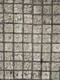 Struttura alta chiusa del sentiero per pedoni dei mattoni Immagini Stock Libere da Diritti