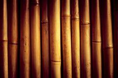 Struttura alta del bambù e piacevole vicina di lerciume Fotografie Stock