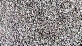 Struttura approssimativa del muro di cemento grigio Fotografia Stock