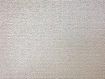 Struttura approssimativa della parete Fotografie Stock Libere da Diritti
